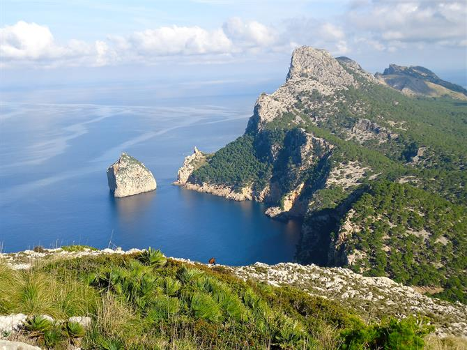 Mallorcas Regionen – Mallorca hat über 550 Kilometer Küstenlinie