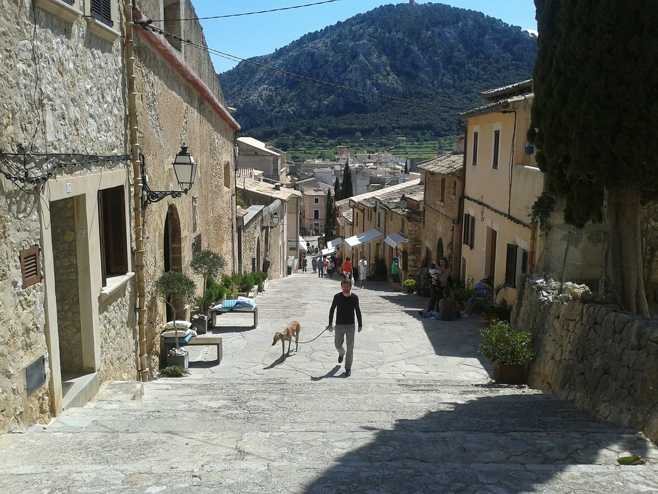 Mallorca Urlaub mit Hund