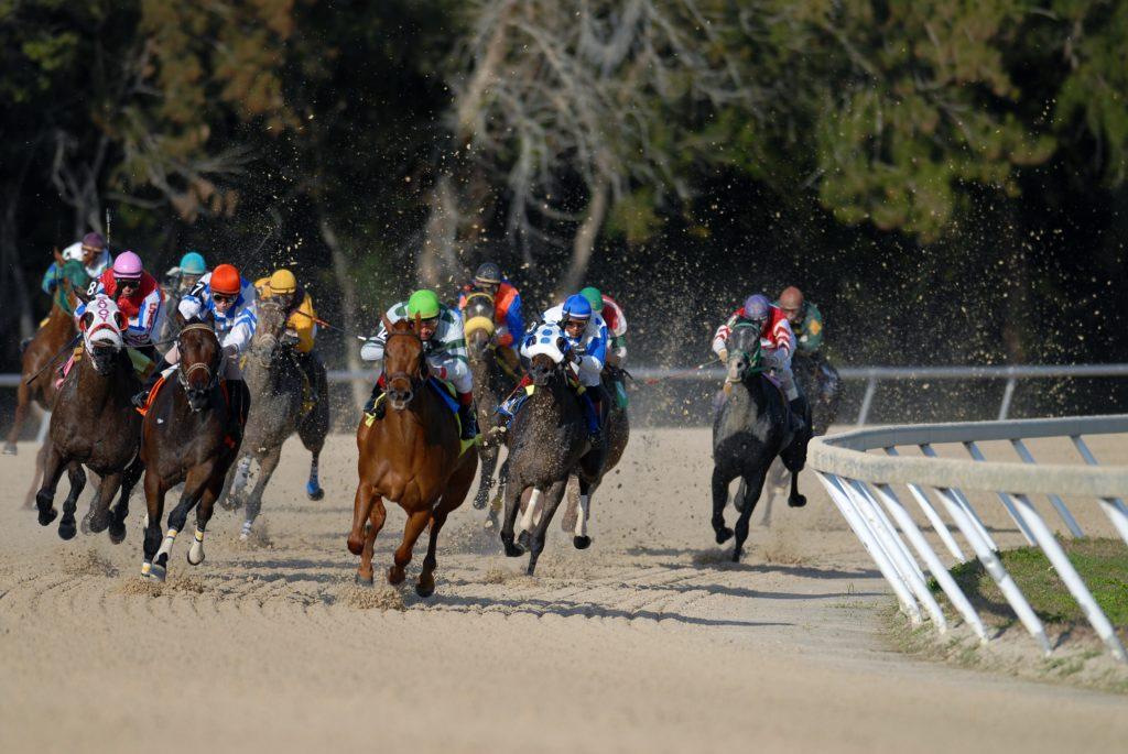 Pferderennen in Spanien